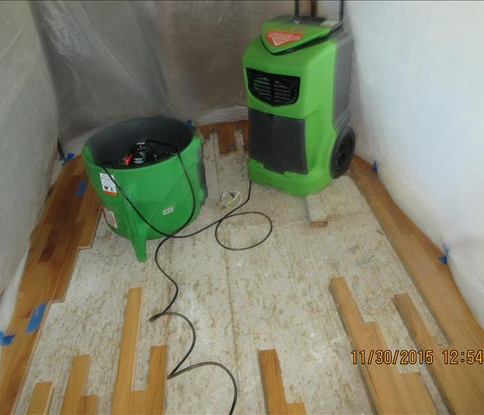 Mold Mitigation in Monroe Home After