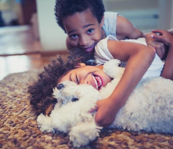 Two kids playing with a dog on a rug.