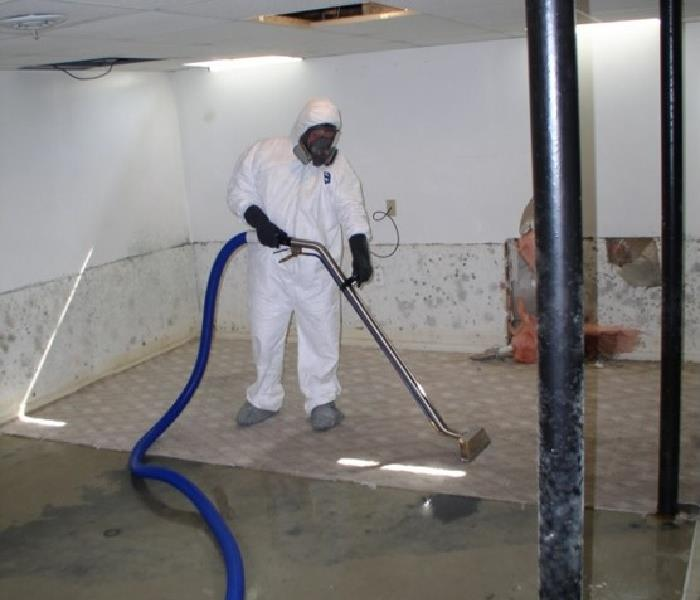 how to choose a mold remediation company