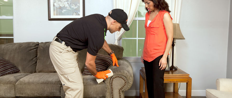 Everett, WA carpet upholstery cleaning